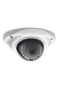 "Купольная 2Мп IP-камера; 1/2.8"" Sony Starvis CMOS (IMX307), HiSilicon (Hi3516Ev100); H264/H265/H265+; Осн.п.: 1080p @ 20к/с, 720p/D1 @ 25 к/с, суб.п.: D1/CIF@ 25 к/с; Fisheye объектив 2.1мм; ИК 10м;  ONVIF; аудиовход RCA (G.711A); RTSP; металл; -10..+50"
